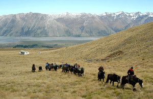 The Tekapo Main Divide Expedition (12 days)