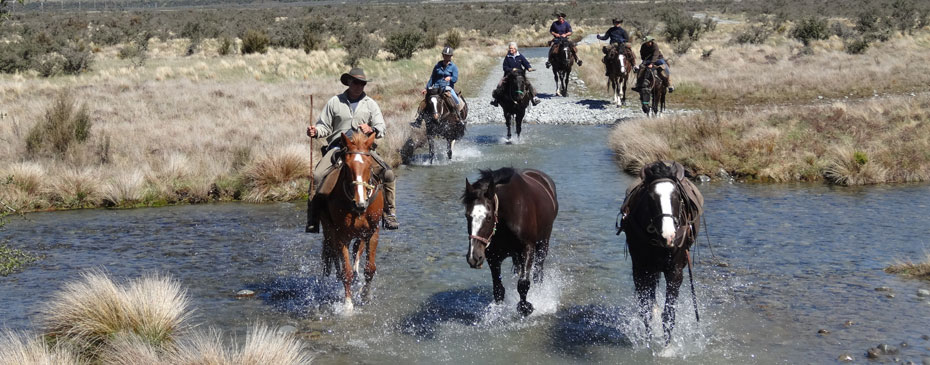 Horse Safaris